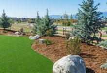 synthetic turf in backyard