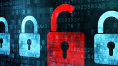 Harvard Data Breach